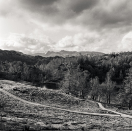 As viewed from Tarn Hows