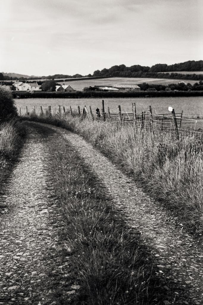 Farm Lane 2