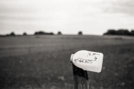 M2 Leica 2015219