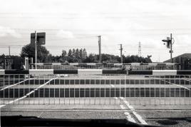 M2 Leica 2015241