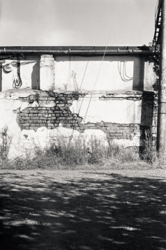 M2 Leica 2015403