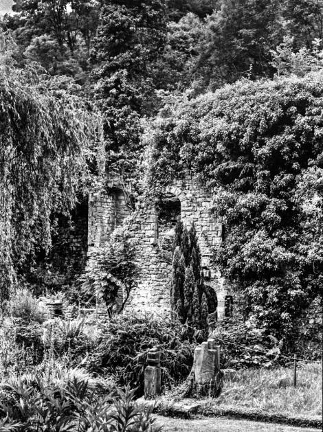 Old Mill-Edit-2