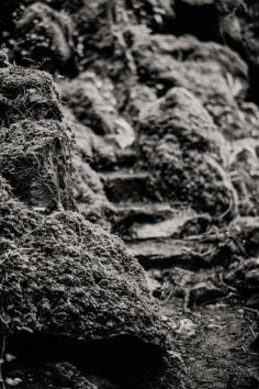 Silverfast Leica M2 051 5