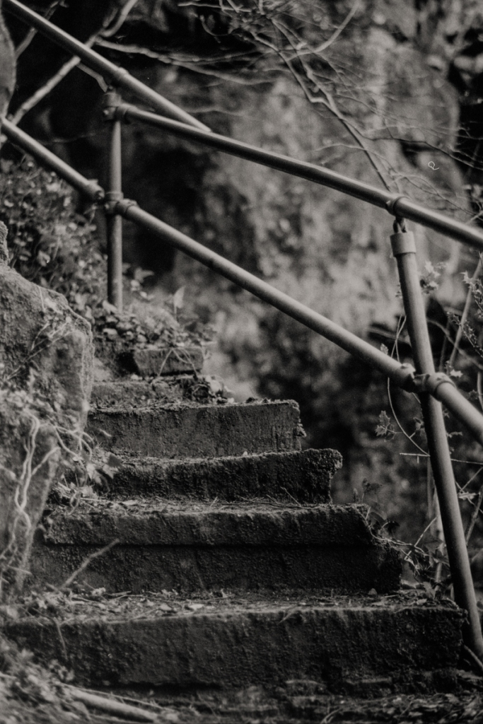 On the 365 Steps, Tintern to Chepstow road. Fuji ACROS 100 in Adox FX-39.