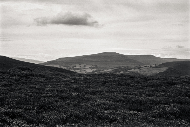 Pen Cerrig Calch from Pen y Fal.